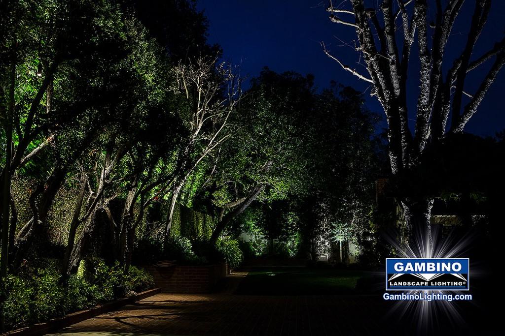 Gambino Landscape Lighting Moonlighting