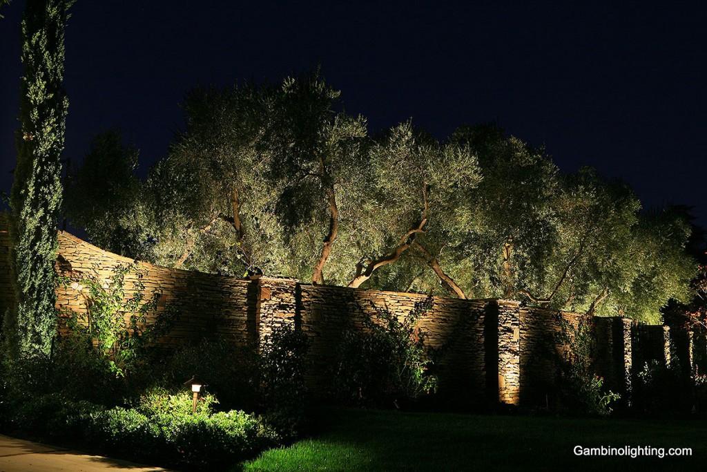 Uplighting and Cross lighting. uplighting- ... & Gambino Landscape Lighting | Uplighting and Cross lighting