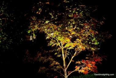 uplighting-9