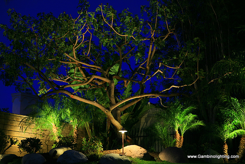 Low Voltage Landscape Lighting Systems : Gambino landscape lighting hybrid low voltage