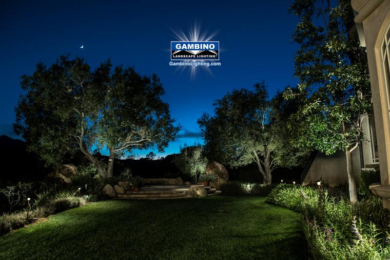1-blog-sideyard